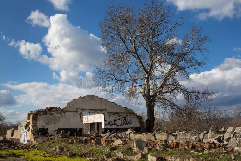 Verlaten vernietigd huis en de aard royalty-vrije stock afbeeldingen