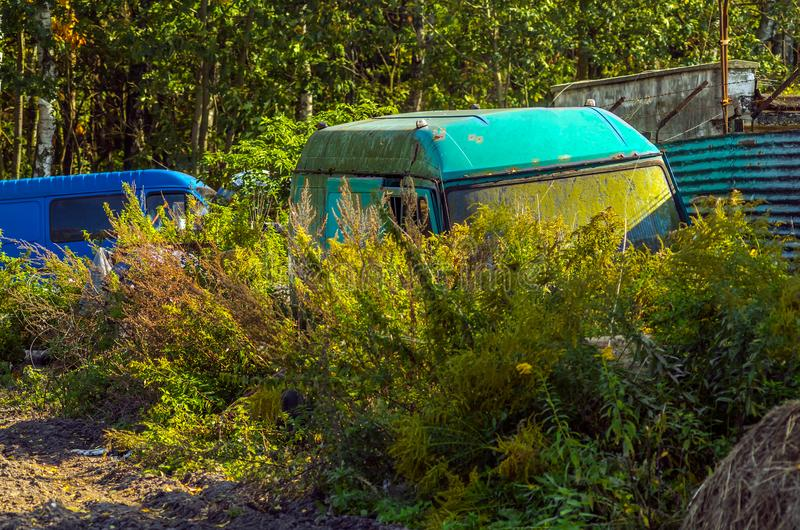 Verlaten vervoervrachtwagens in de struiken stock foto's