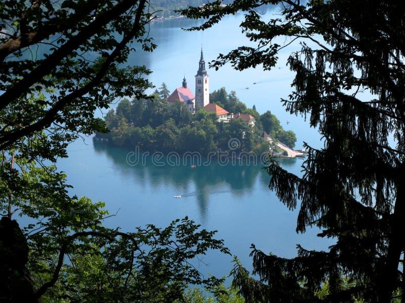 Verlaufene Insel, See verlaufen, Slowenien lizenzfreies stockfoto