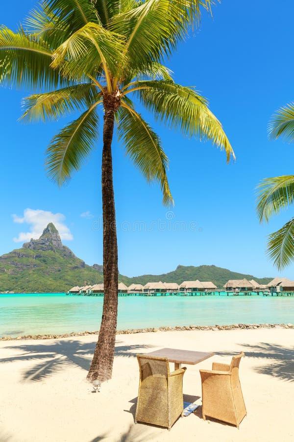 Verlegen Sie und zwei Stühle unter KokosnussPalme auf weißem Sandstrand lizenzfreies stockfoto