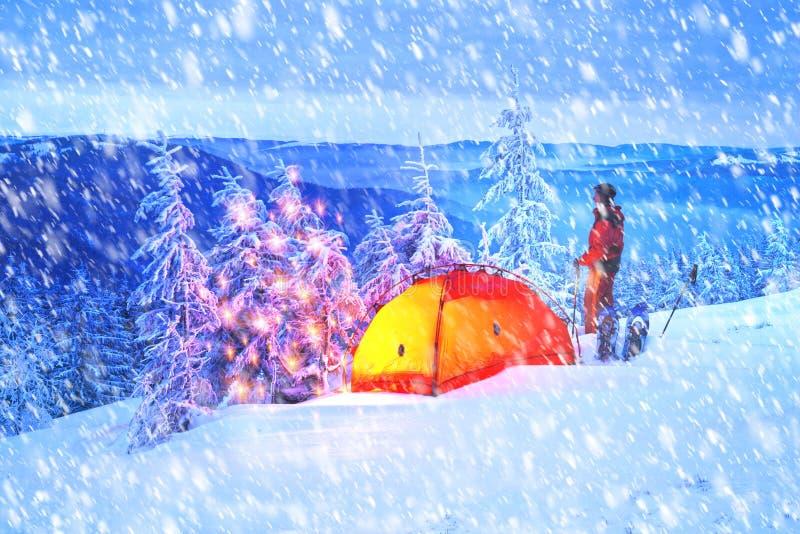 Verlicht de winterbos in de Karpaten royalty-vrije stock foto