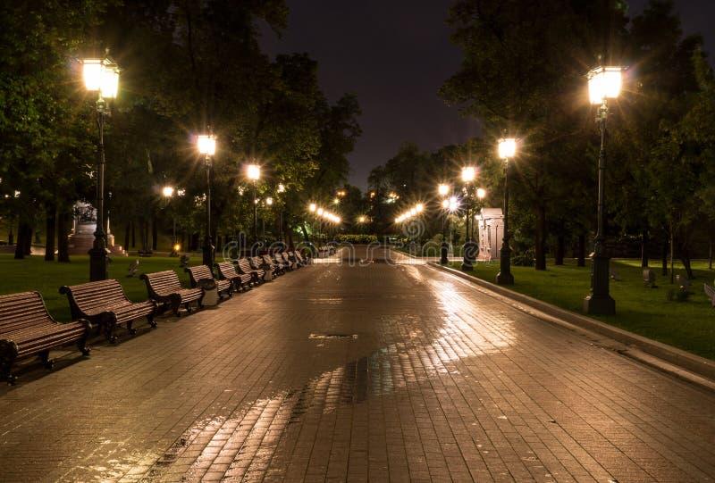 Verlicht stadspark bij de zomernacht achtergrond, het stadsleven stock foto