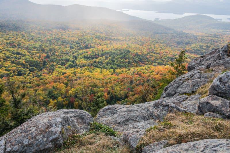 Verlichte Autumn Colors Shrouded In Rain-Mist royalty-vrije stock fotografie