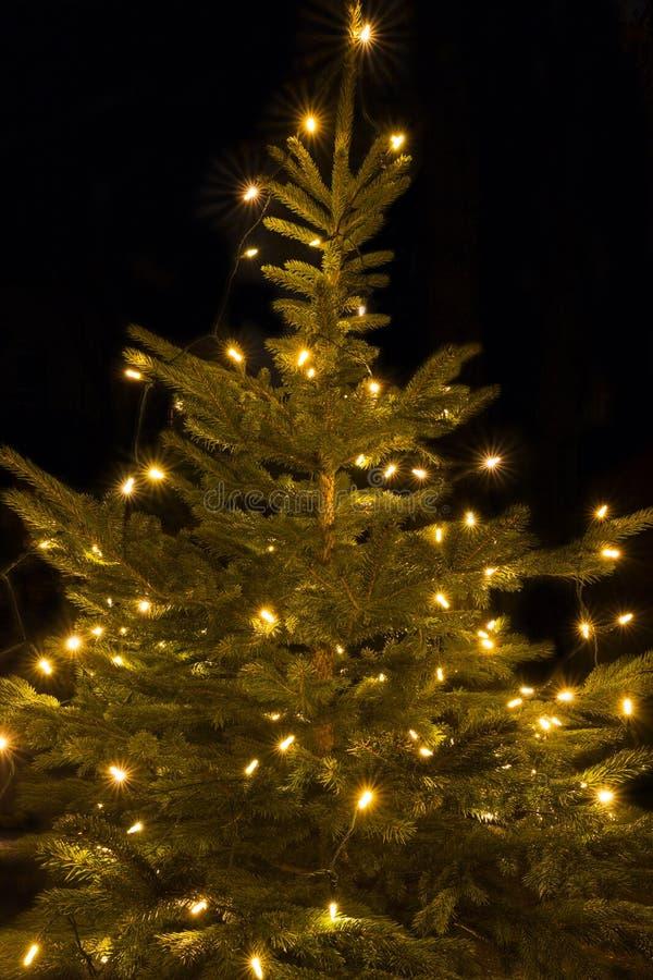 Verlichte Kerstboom, Buiten Schot Stock Foto - Afbeelding bestaande ...