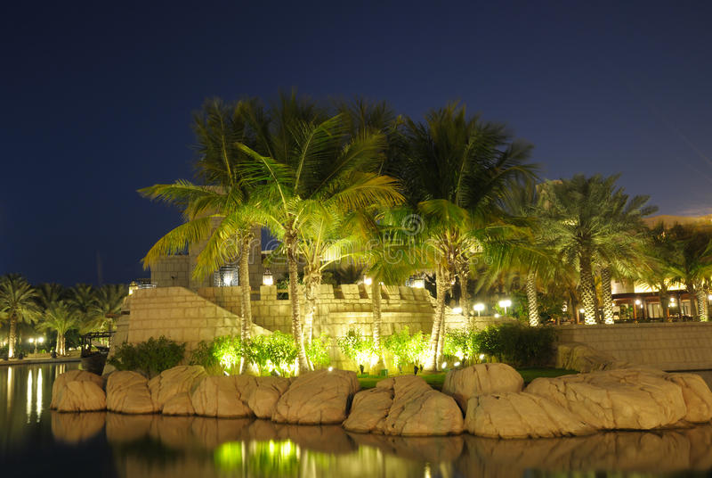 Verlichte Palmen in Doubai royalty-vrije stock afbeeldingen