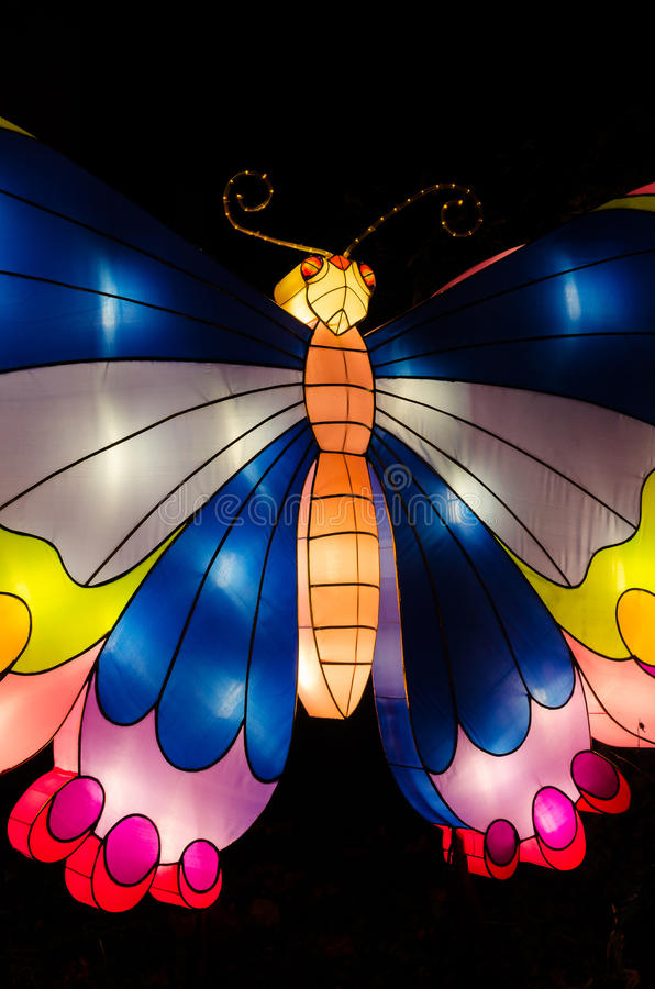 Verlichte vlinder stock afbeelding