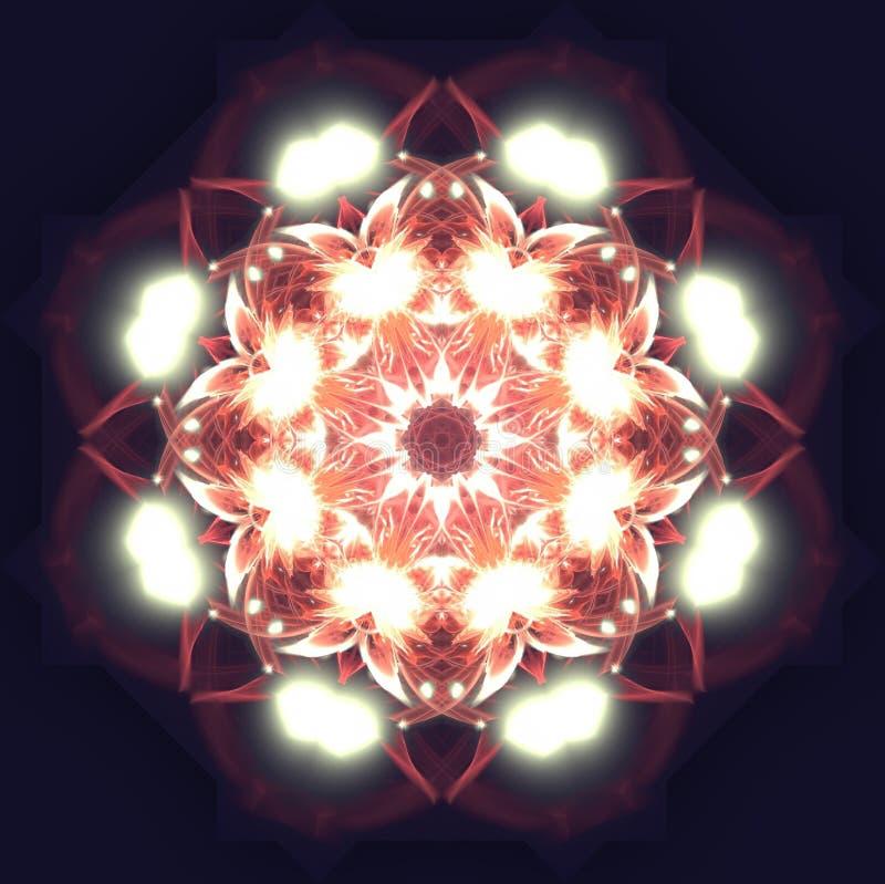 Verlichtingsbloemen stock fotografie
