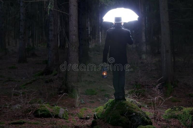 Verlichtingsparaplu stock fotografie