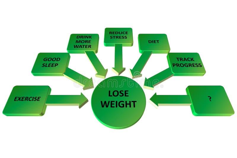 Verlies de kaartconcept van de gewichtsmening op bord vector illustratie