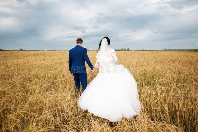 Verlobtes mit der Braut lizenzfreie stockfotografie