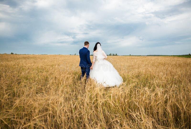 Verlobtes mit der Braut auf dem Gebiet stockfotos