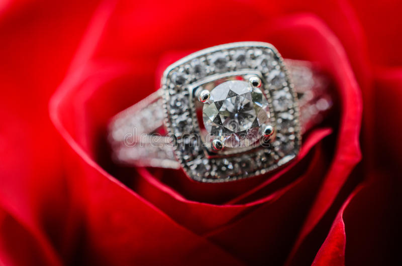 Verlobungsring auf Rotrose lizenzfreies stockfoto
