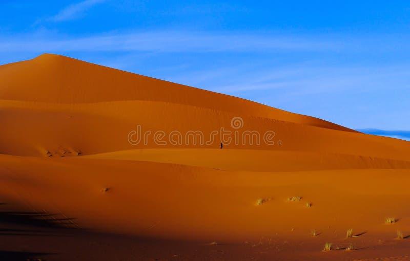 Verloren in der Wüste lizenzfreies stockfoto