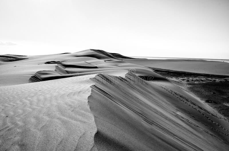 Verloren duinlandschap in zwart-wit stock foto's