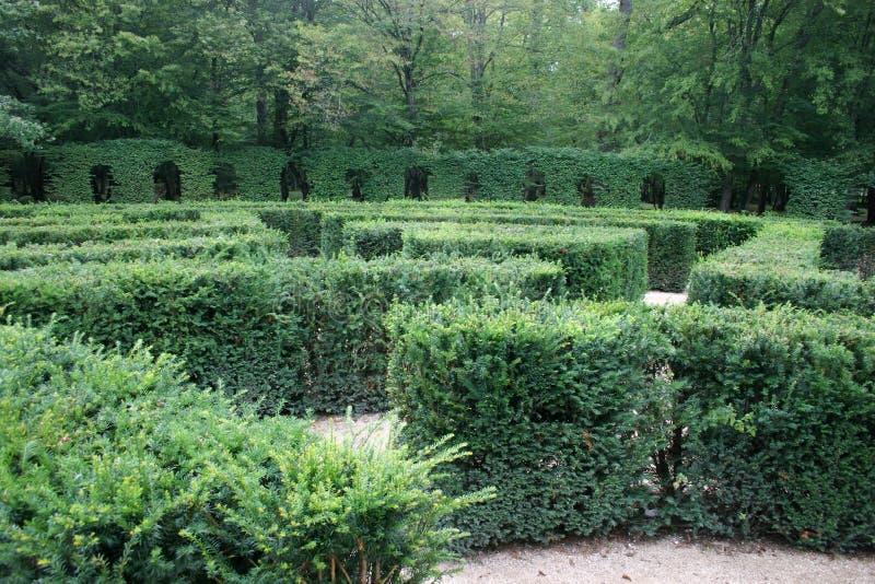 Download Verloren in een labyrint stock foto. Afbeelding bestaande uit probleem - 26690