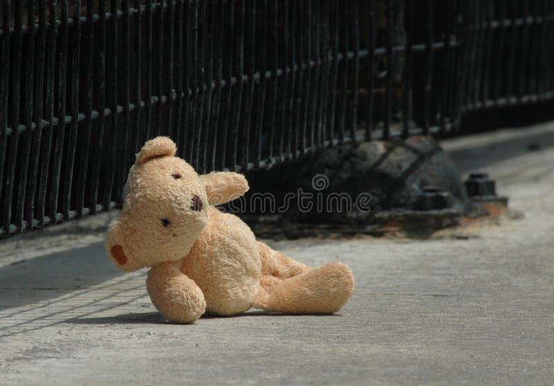 Verlorener Bär lizenzfreie stockbilder