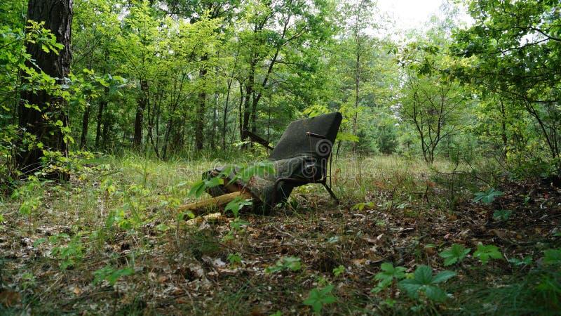 Verlorener Stuhl im Wald stockfotografie