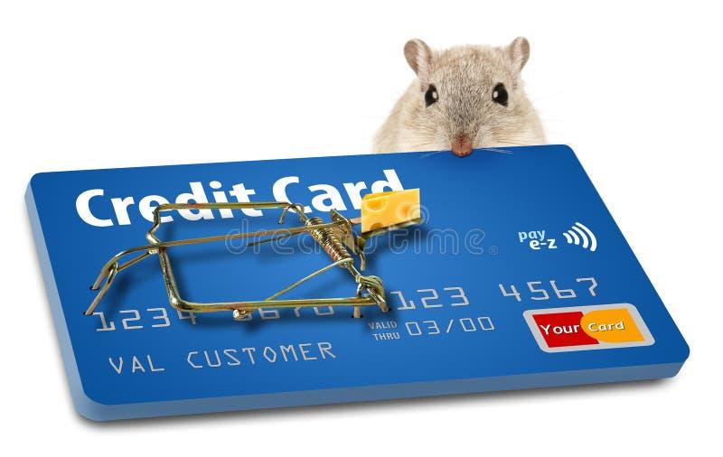 Vermeiden Sie Kreditkartefallen Eine angelockte Mausefalle macht diesen Punkt lizenzfreie stockfotos