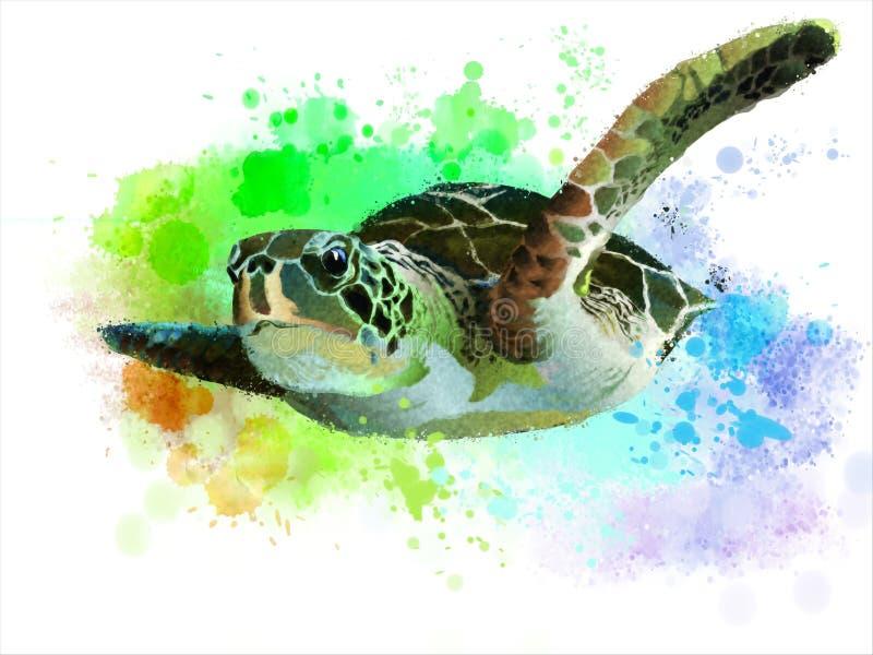 vermelha för sköldpadda för hav för bahia brazil coroaö royaltyfri illustrationer