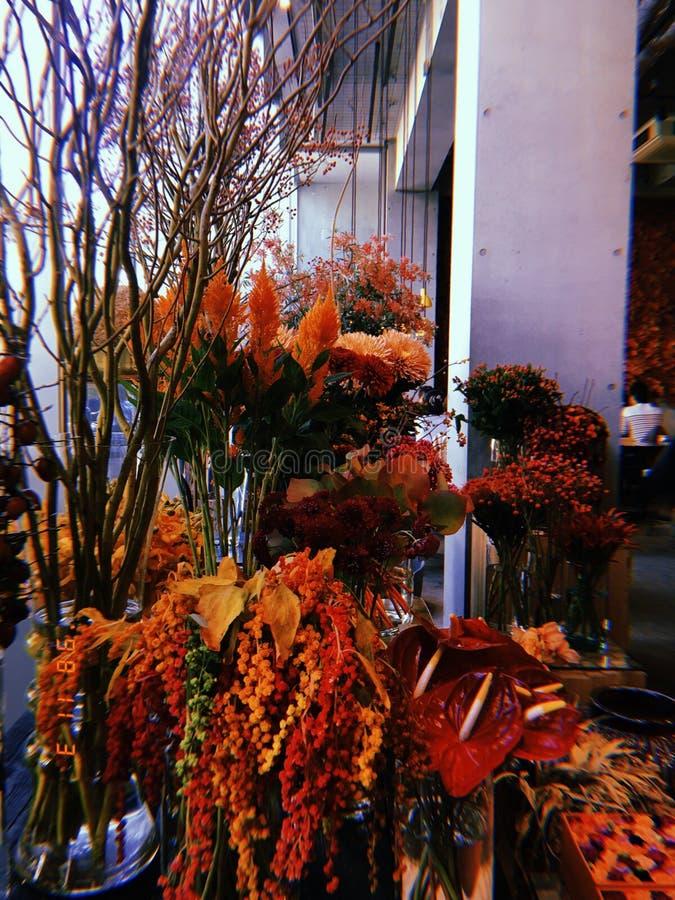 Vermelha flor imagens de stock royalty free