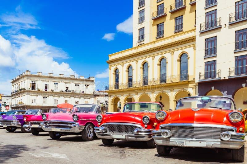 1955 vermelho americano, 1956 convertíveis, rosa 1957 convertível e um carro convertível do vintage 1958 imagem de stock