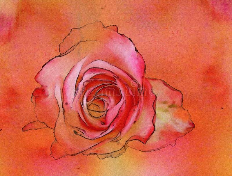 Vermelho 3 das rosas da aquarela ilustração stock