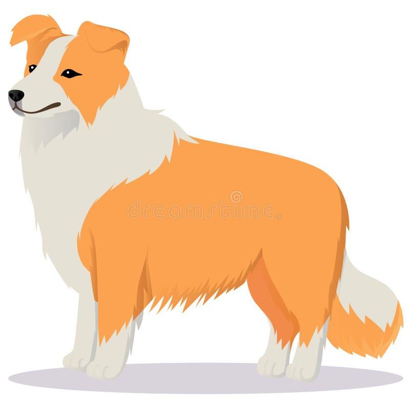 Vermelho do cão de border collie ilustração royalty free