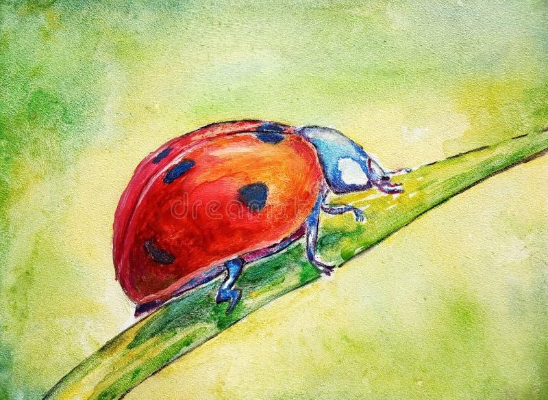 Vermelho em uma única folha em um estilo da aquarela, base estrutural do joaninha com fundo verde ilustração royalty free