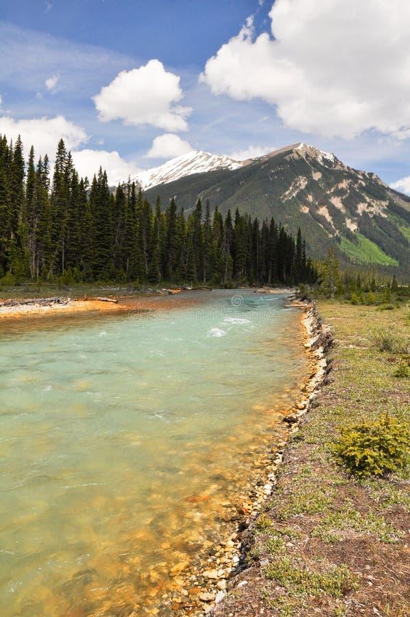 Vermilion Fluss bei Kootenay NP, Kanada stockbild