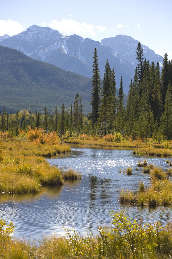 Download Vermilion Lakes stock photo. Image of water, mountains - 15902840