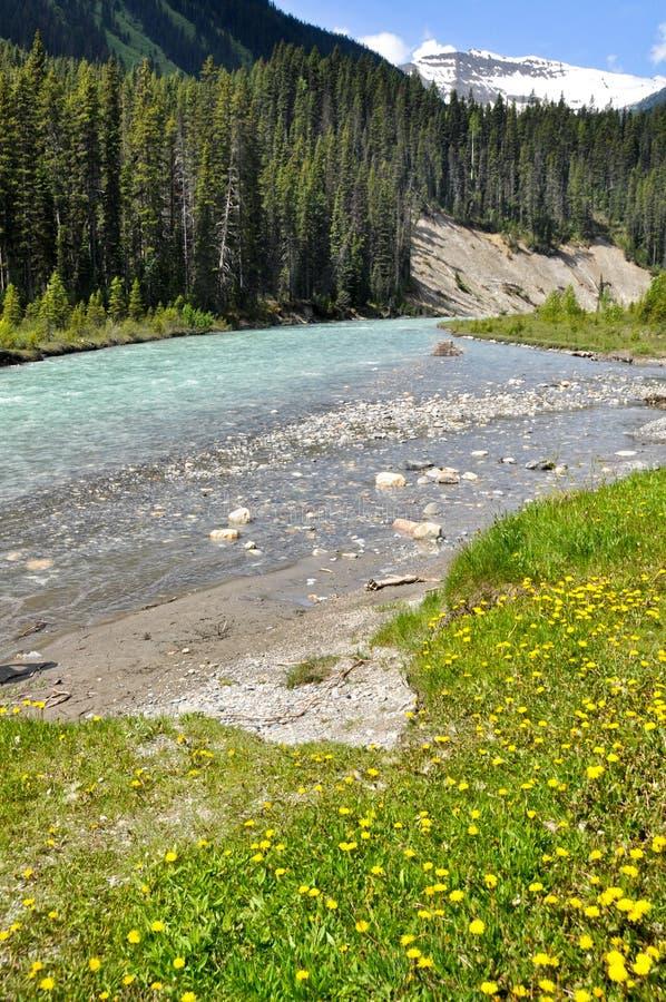 Download Vermilion River At Kootenay National Park, Canada Stock Photo - Image: 21325820