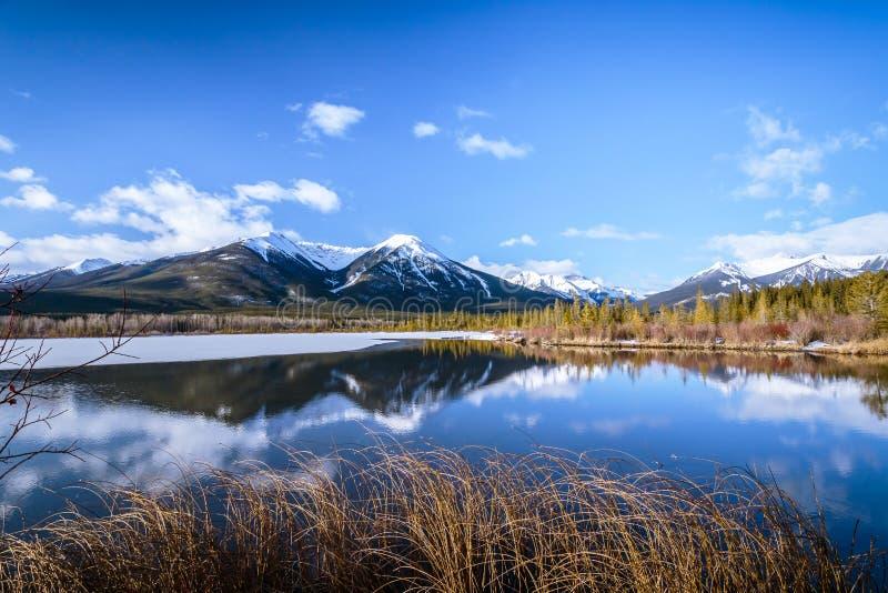 Vermiljoenenmeer bij het Nationale Park van Banff, Alberta, Canada royalty-vrije stock foto's