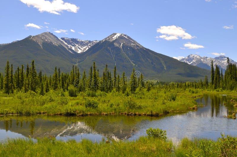 Vermillion Lakes royalty free stock photo