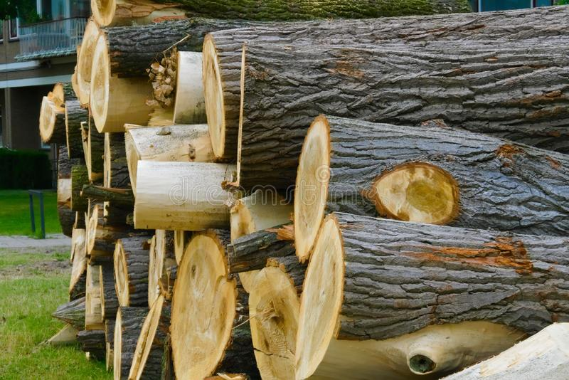 Verminder gestapeld timmerhout op elkaar royalty-vrije stock foto