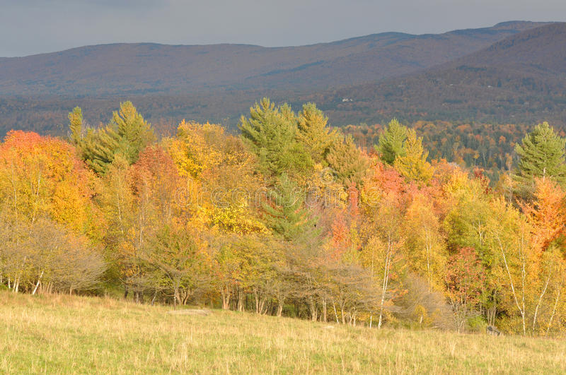 Vermont Fall Foliage, Mount Mansfield, Vermont. Vermont Fall Foliage, Mount Mansfield in the background, Vermont, USA stock photography