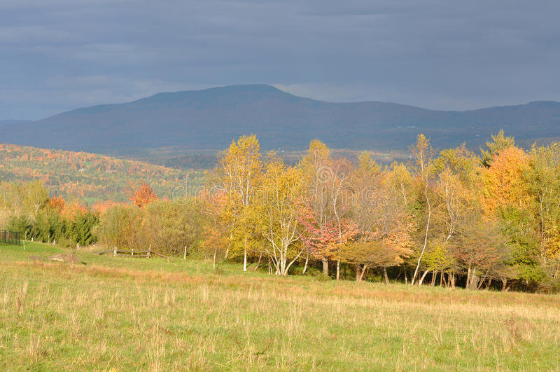 Vermont-Fall-Laub, Montierung Mansfield, Vermont stockfotos