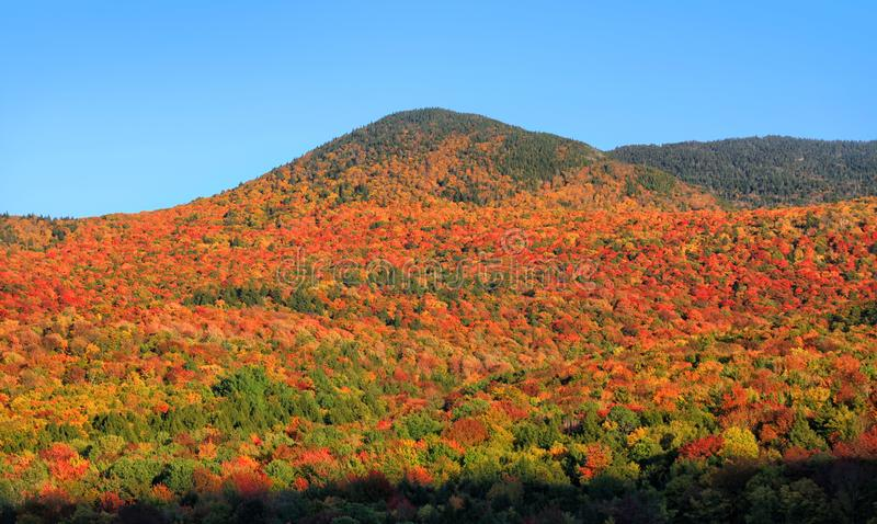 Vermont mountains spectacular fall foliage stock photography