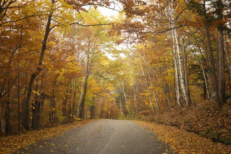 Vermont-Straße im Herbst lizenzfreies stockfoto