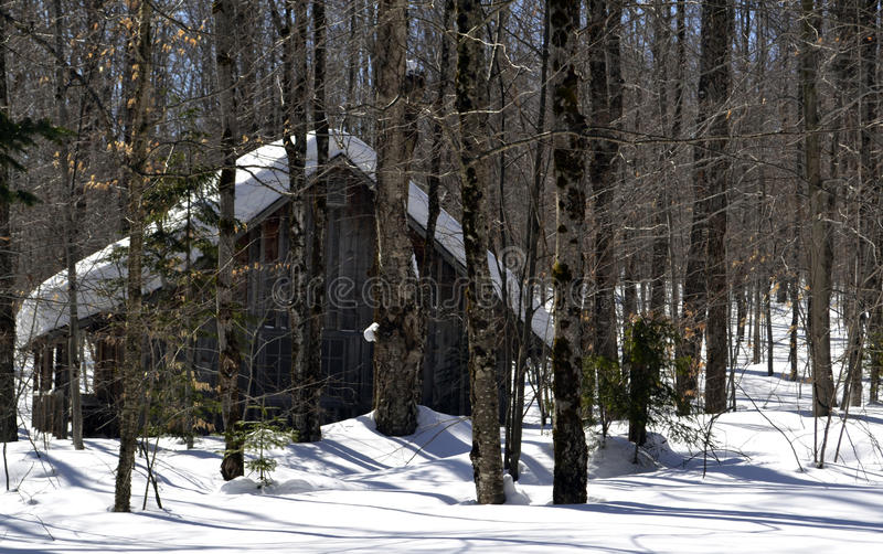Vermont Sugar Shack Maple Syrup stock photo