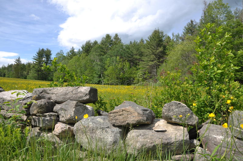 Vermont-Wiese stockbilder