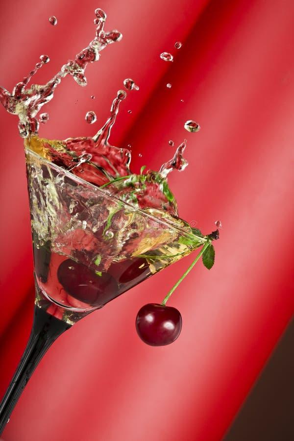 Free Vermouth Splash Royalty Free Stock Photo - 5971605