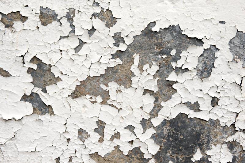 Vernice di bianco di sfaldamento sulla parete fotografia stock libera da diritti