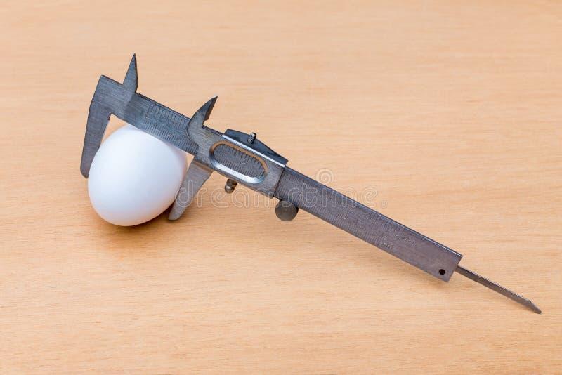 Vernier caliper measuring white chicken egg royalty free stock photos