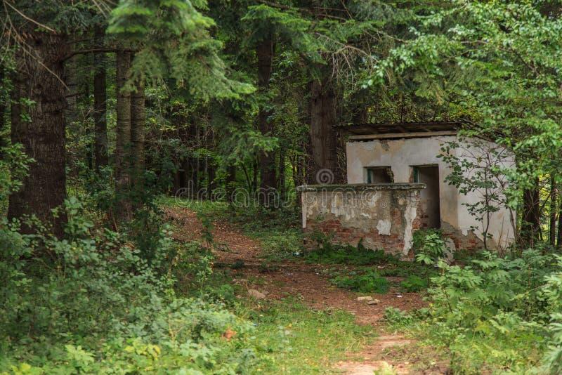 Vernietigd huis in een midden van bos stock foto