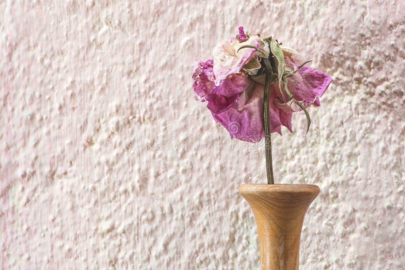 Vernietigd nam bloem toe royalty-vrije stock fotografie