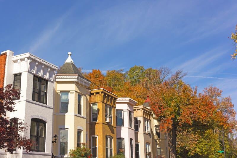 Vernieuwde historische die huizen in de stad door loofbomen in de herfstkleuren worden omringd, Washington DC, de V.S. royalty-vrije stock foto