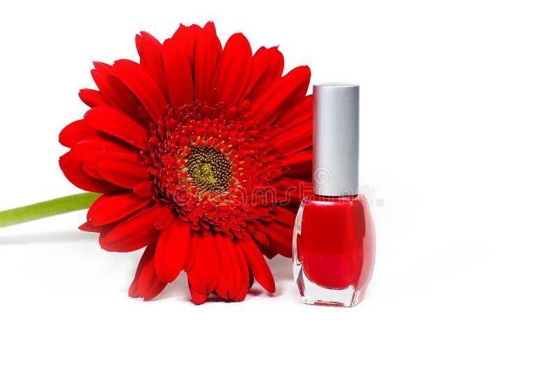 vernis à ongles de fleur d'ANG image libre de droits