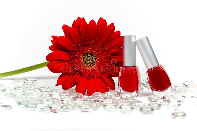vernis à ongles de fleur rouges image libre de droits