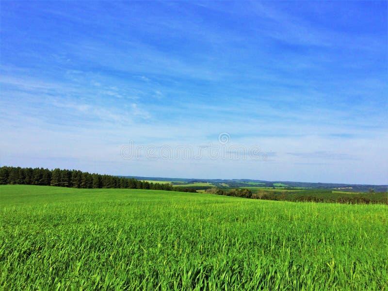 Vero un paesaggio come il tema di Windows XP immagini stock libere da diritti