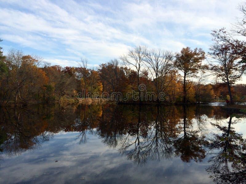 Verona Park immagini stock libere da diritti